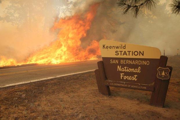 Mountain (CA) Wildland Fire Update | NW Fire Blog