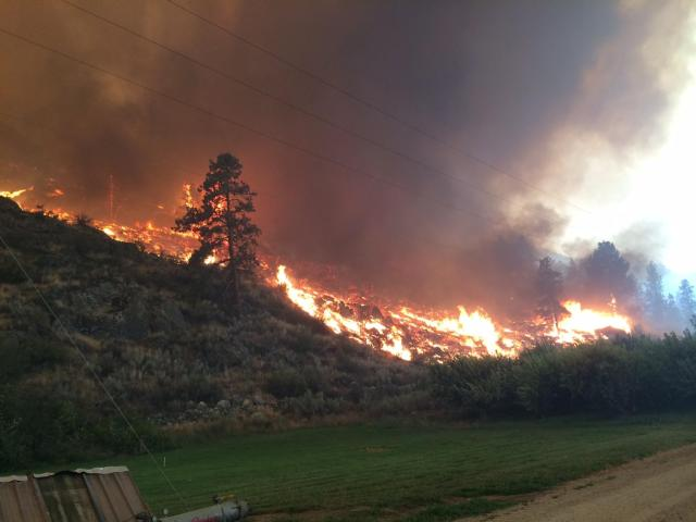 East Zone fire activity on July 21 [Photo Courtesy: inciweb]