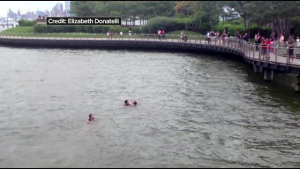Two men rescue woman from Hudson River in Hoboken on July 19, 2014 (Credit: CBS 2)