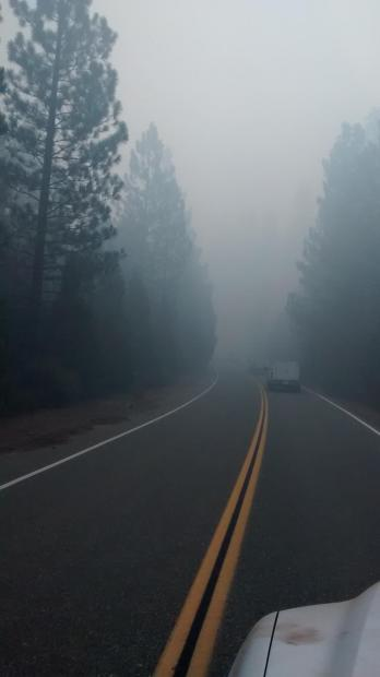 Conditions seen on the roadway