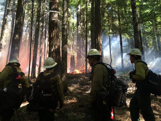 Firefighters conducting a burnout operation. [Photo Credit:  36PitFire IMT]