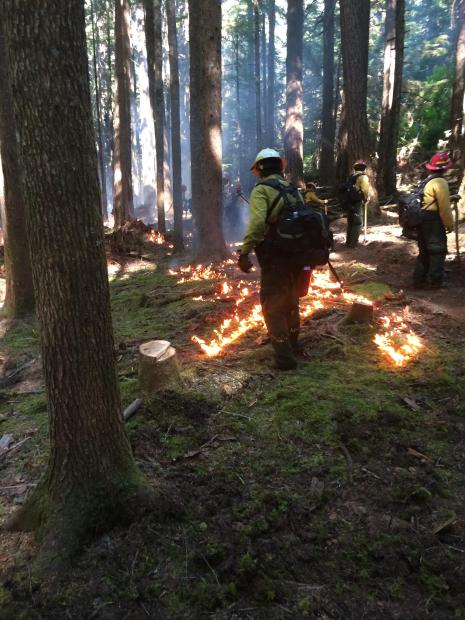 Another look at Firefighters conducting Burnout operations [Photo Credit: 36PitFire IMT]