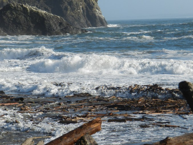 Log debris at Cape Disappointment