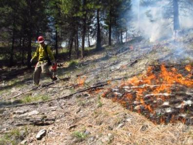 School Point Prescribed Fire | Courtesy of: @inciweb