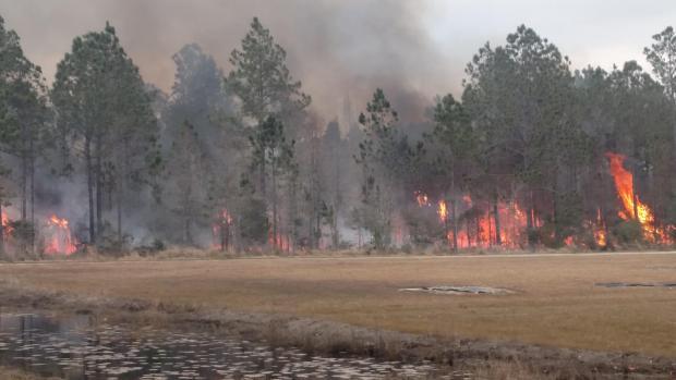 Grand Bature Fire. Credit: USFWS