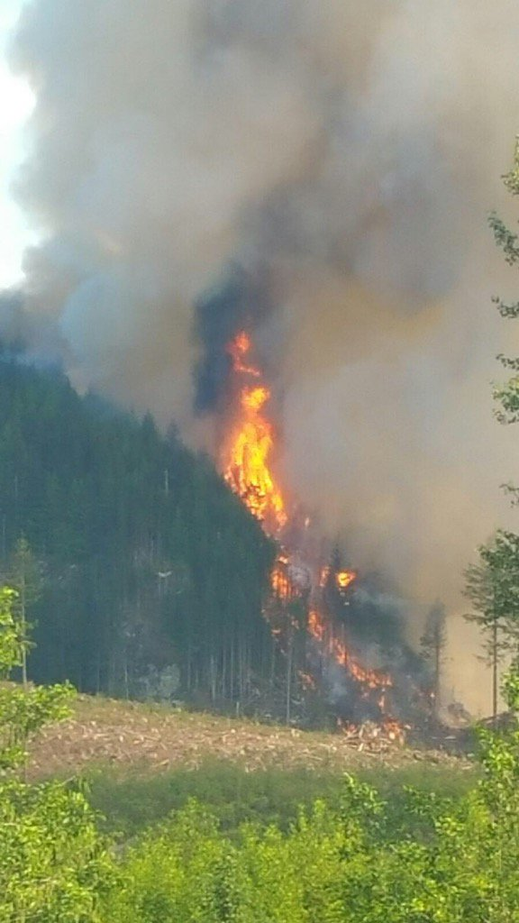 Photo Credit: Snohomish County Fire District 7.