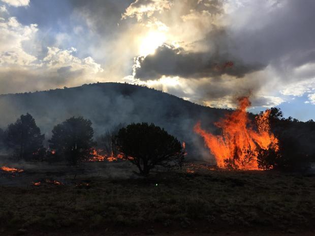 Bert Fire by A Gonzales USFS