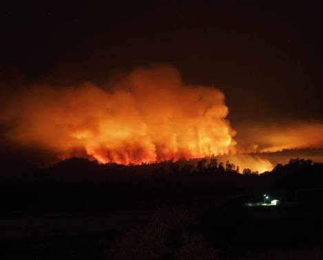 Coleman Fire (Credit: Los Padres NF)