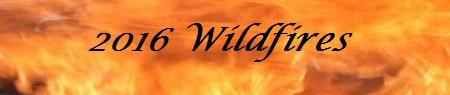 wildfires 2016