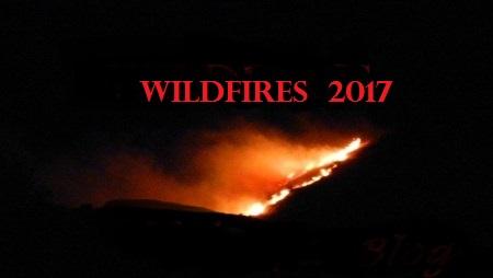 blog header wildfires
